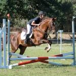 Fredz Vlottenburg Stables Jumping Challenge
