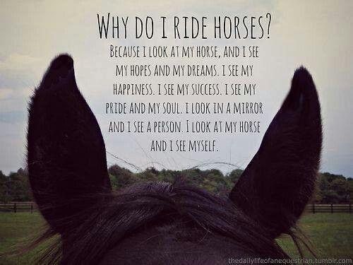Quotes About Happiness And Horses. QuotesGram